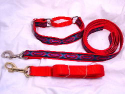 One inch wide martingale collar and lead