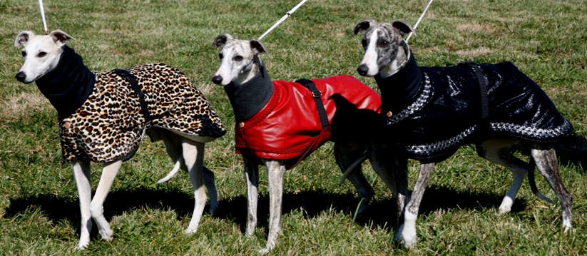 Northwind coats
