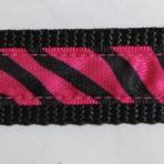 1MC241 Zebra Stripes on Hot Pink