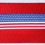 2MC567 Patriotic Flag Motif
