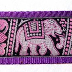 2MC818 Indian Elephants