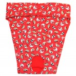 EP6038 Red Paisley Panty