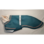 C3045 Turquoise Pleather Whippet Coat
